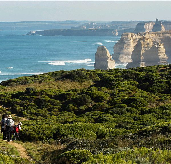 Twelve Apostles Lodge Walk (4 Days)