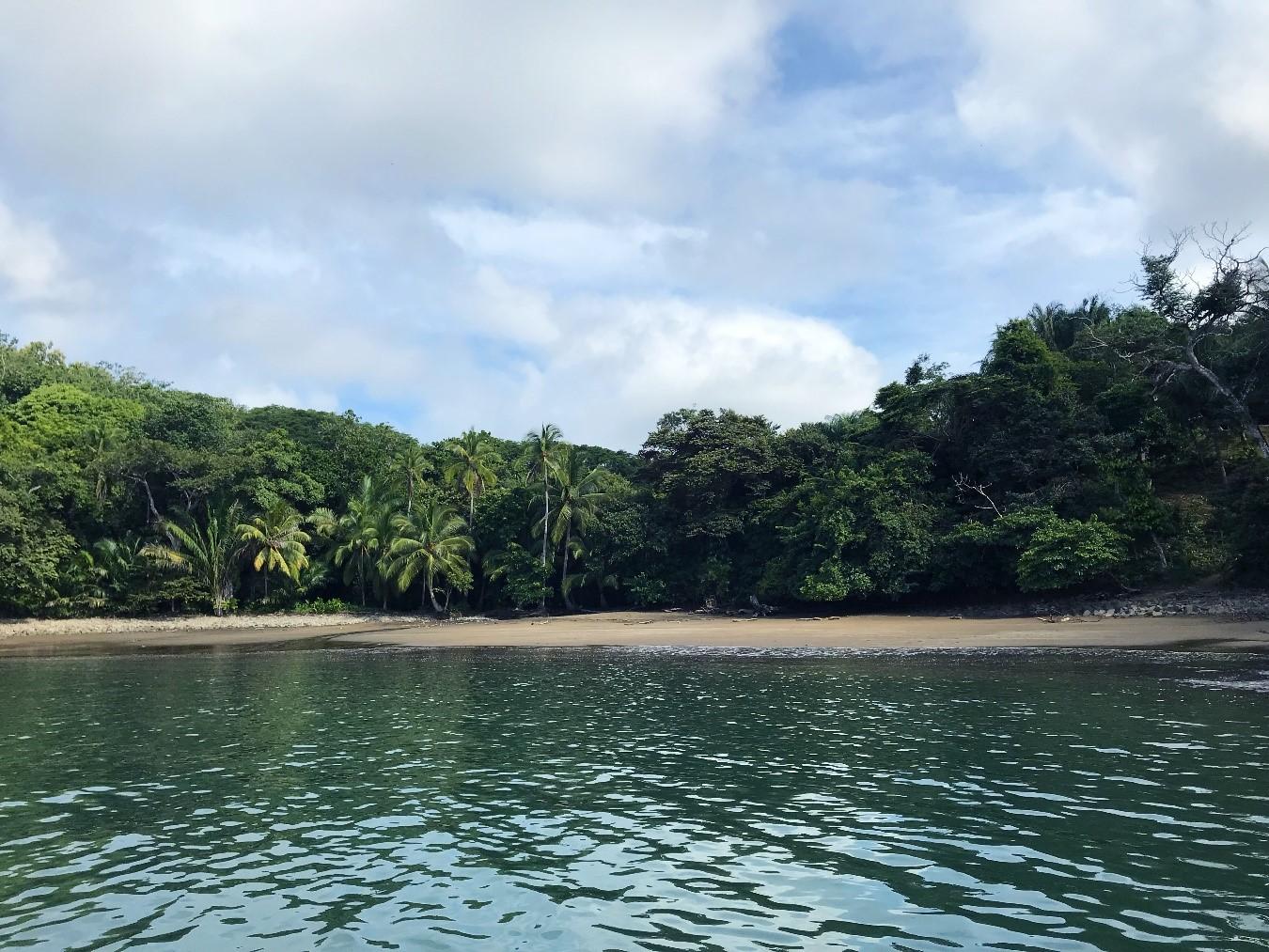 Boca Chica, Panama, Supplier
