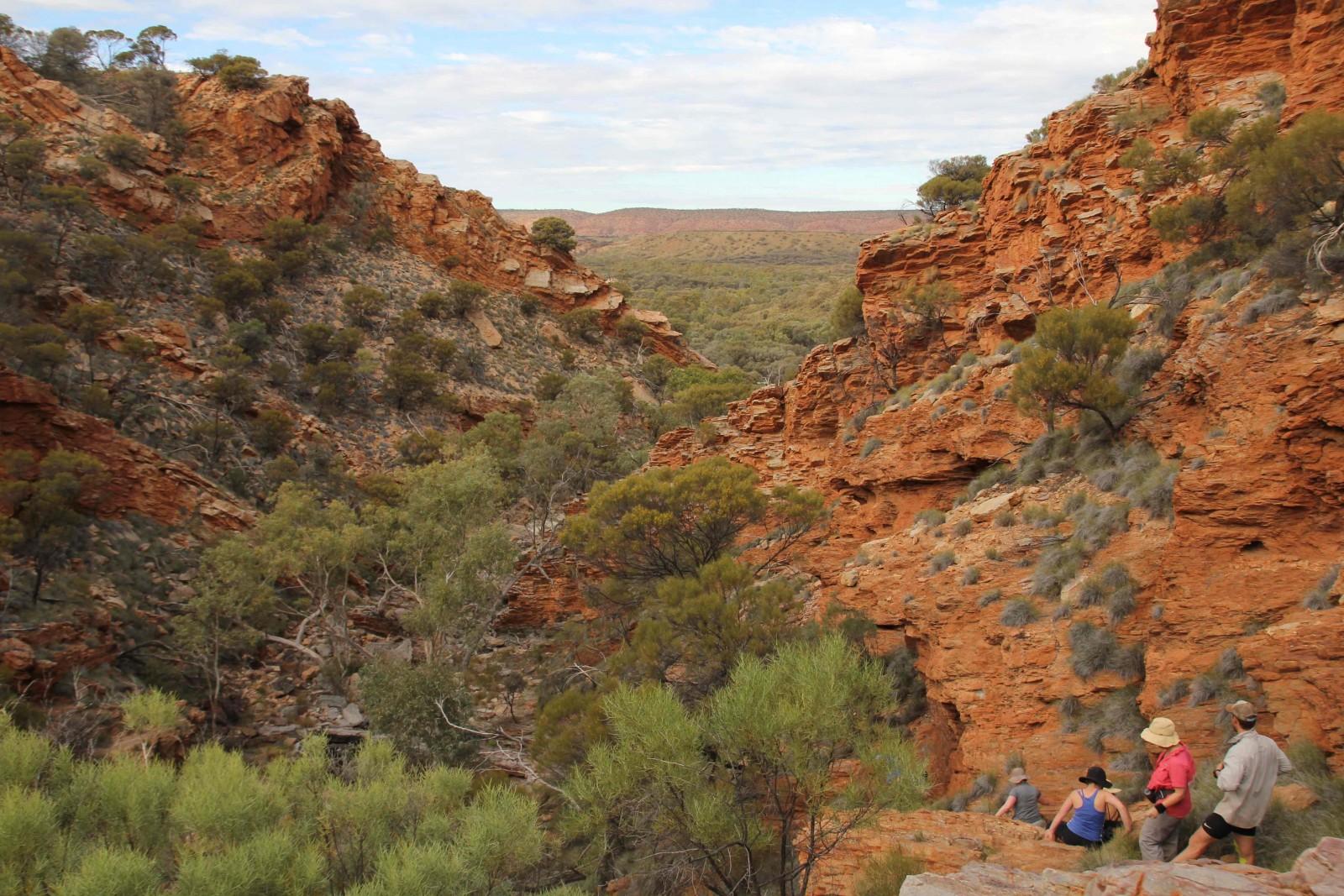Larapinta Trail , Australia, Supplier (APTC)