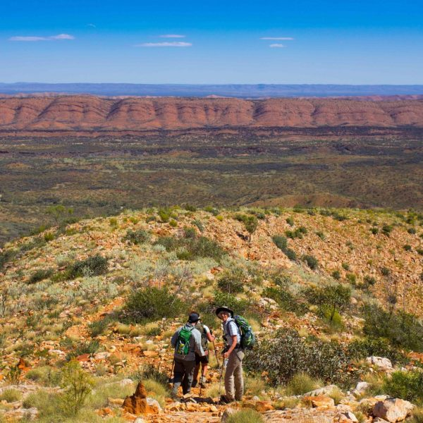 Classic Larapinta Trek (6 Days)