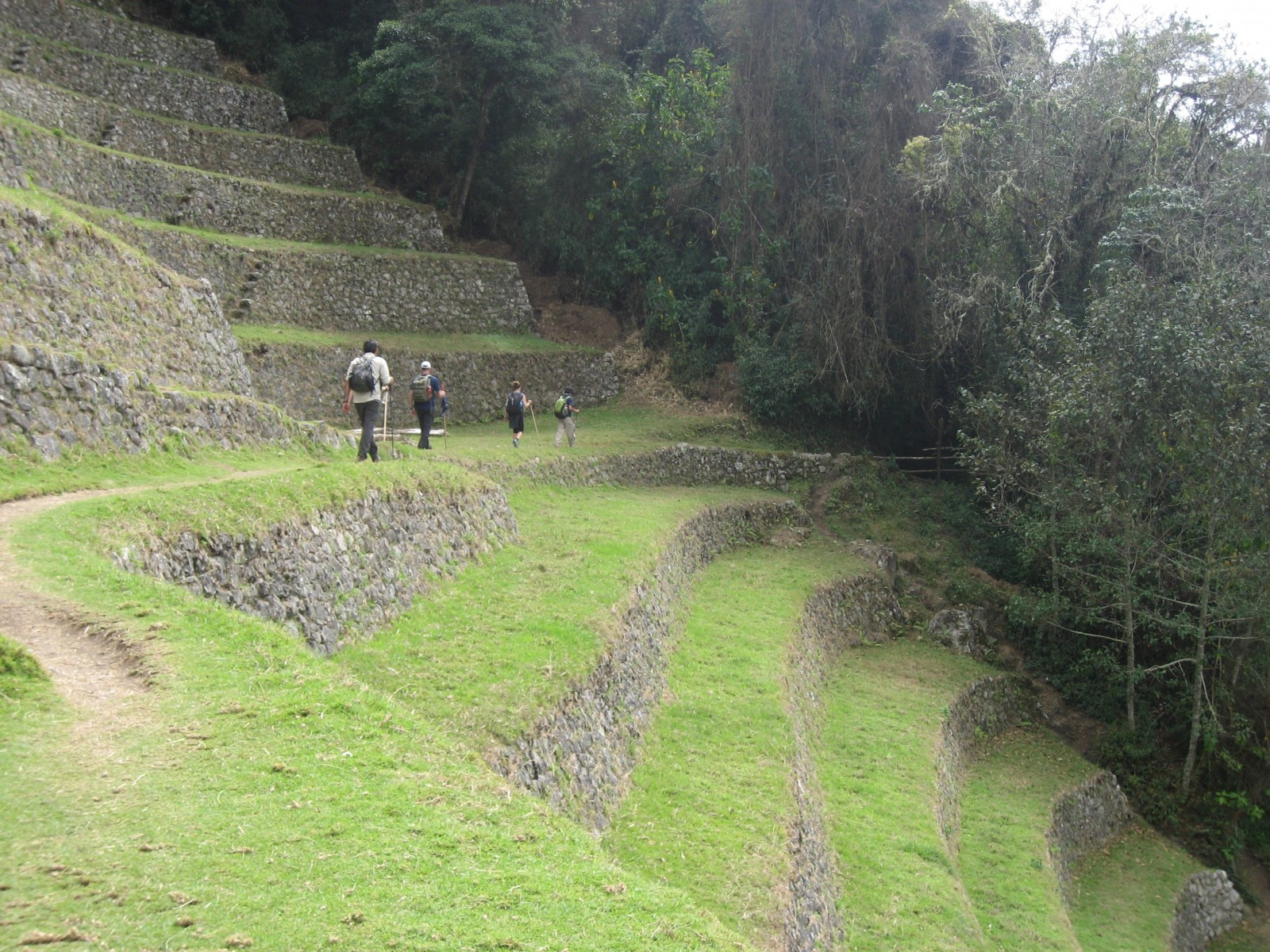 hiking, Inca Trail, Peru, Supplier