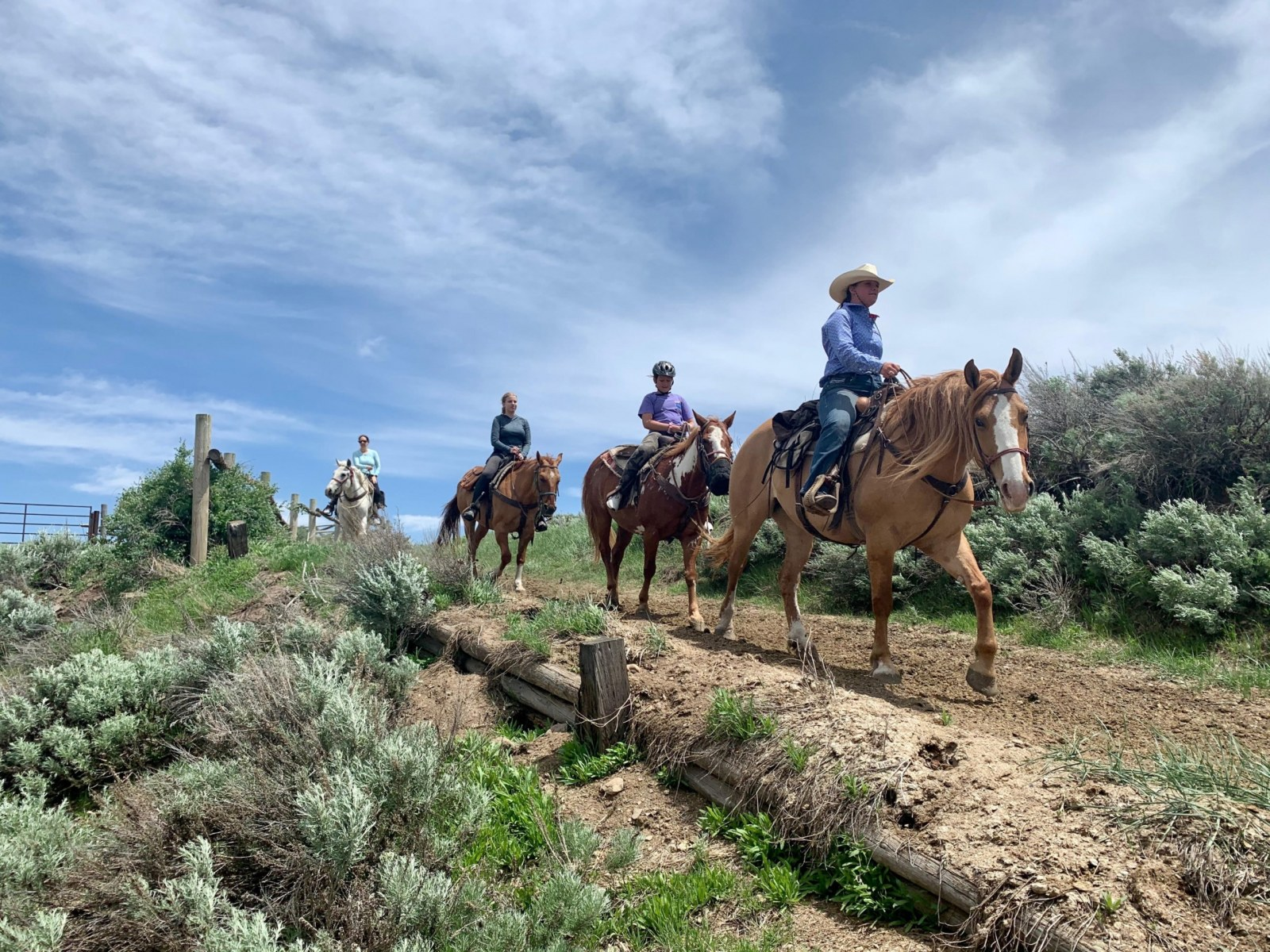Jackson Hole, Horseback Riding