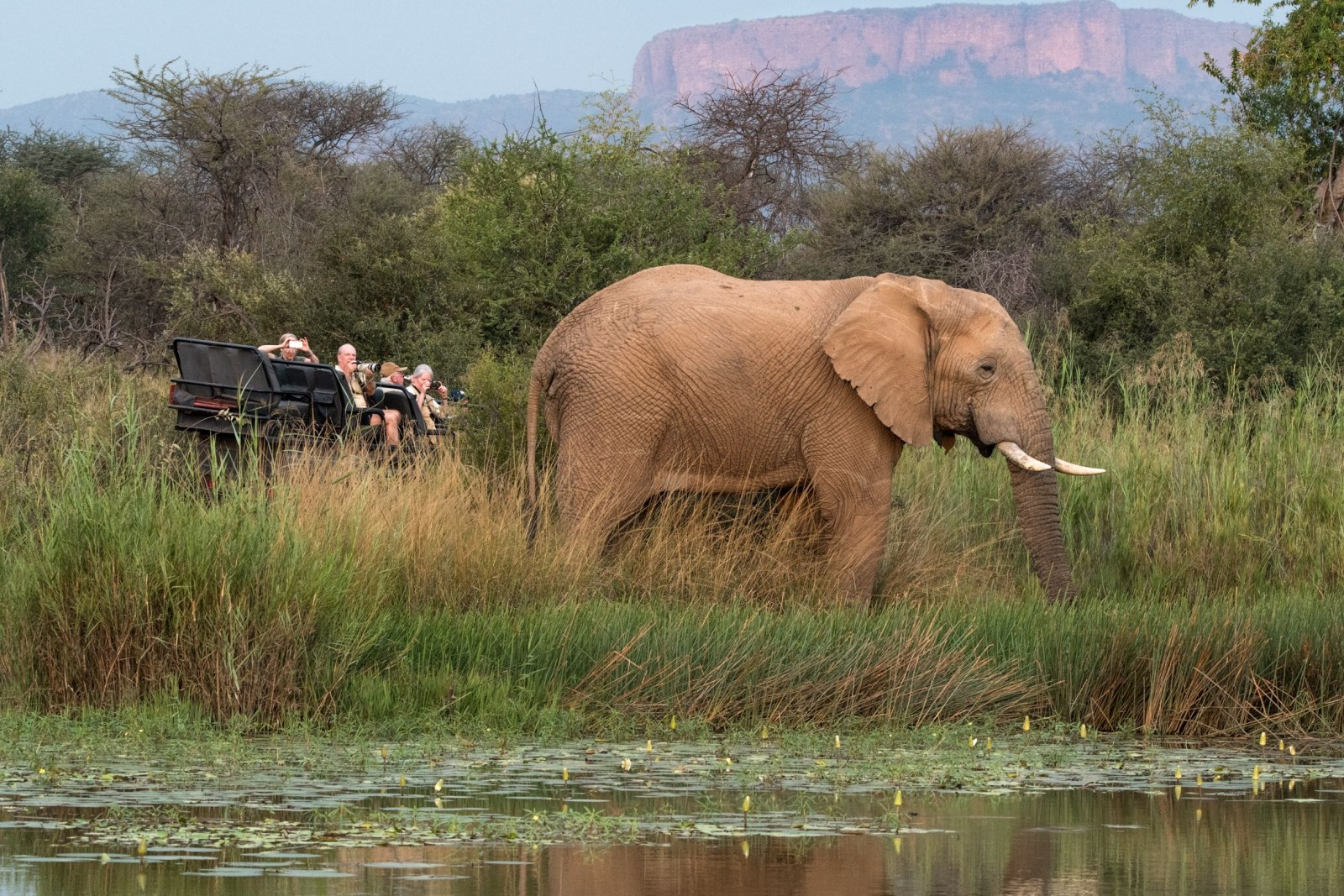 Unique & Unforgettable Experiences in South Africa