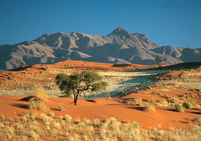 Namib Rand Nature Reserve, Namibia, Africa, Supplier Photo (Ultimate Safaris)