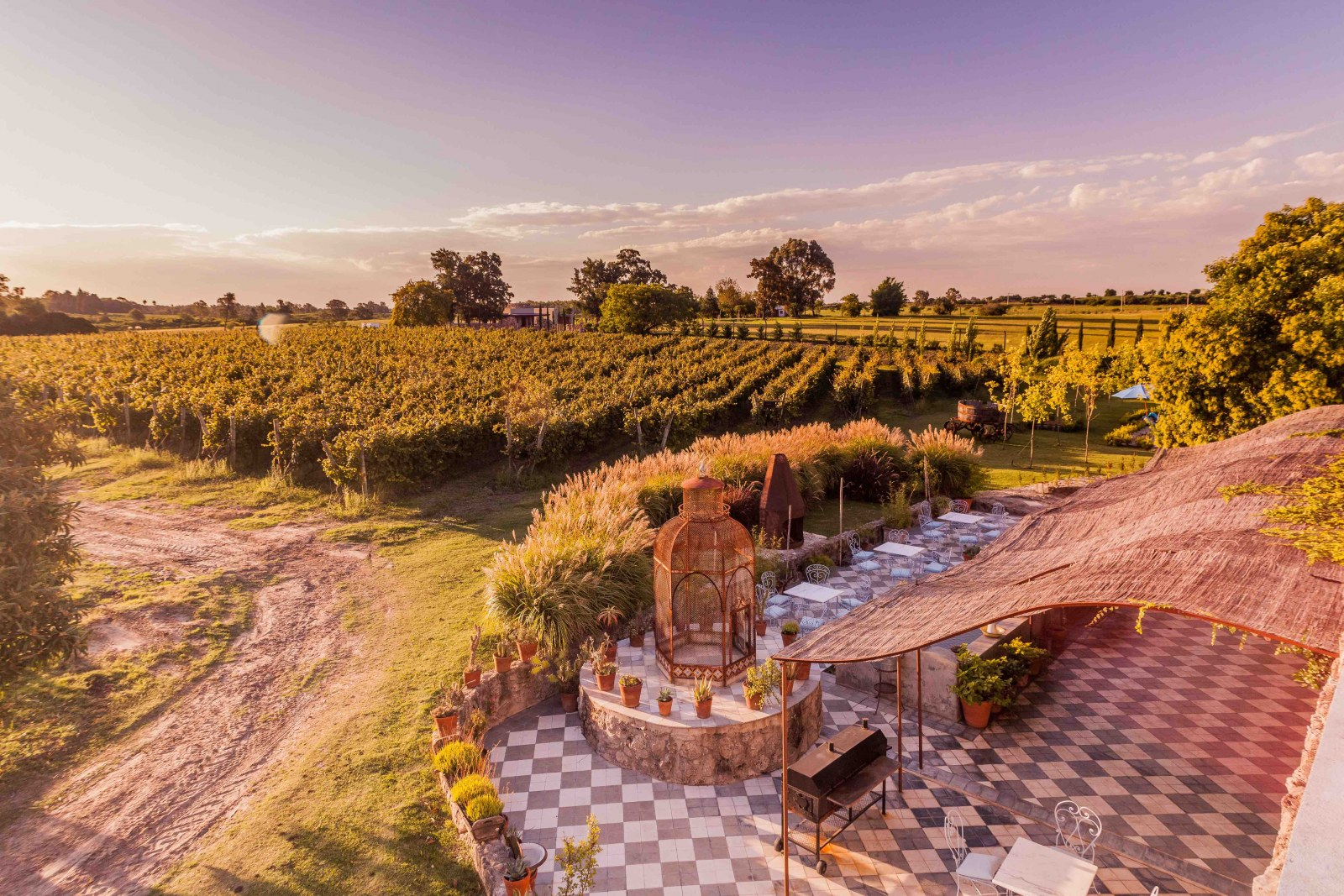 Narbora winery, Carmelo, Uruguay, Supplier Photo (Lures Tours)