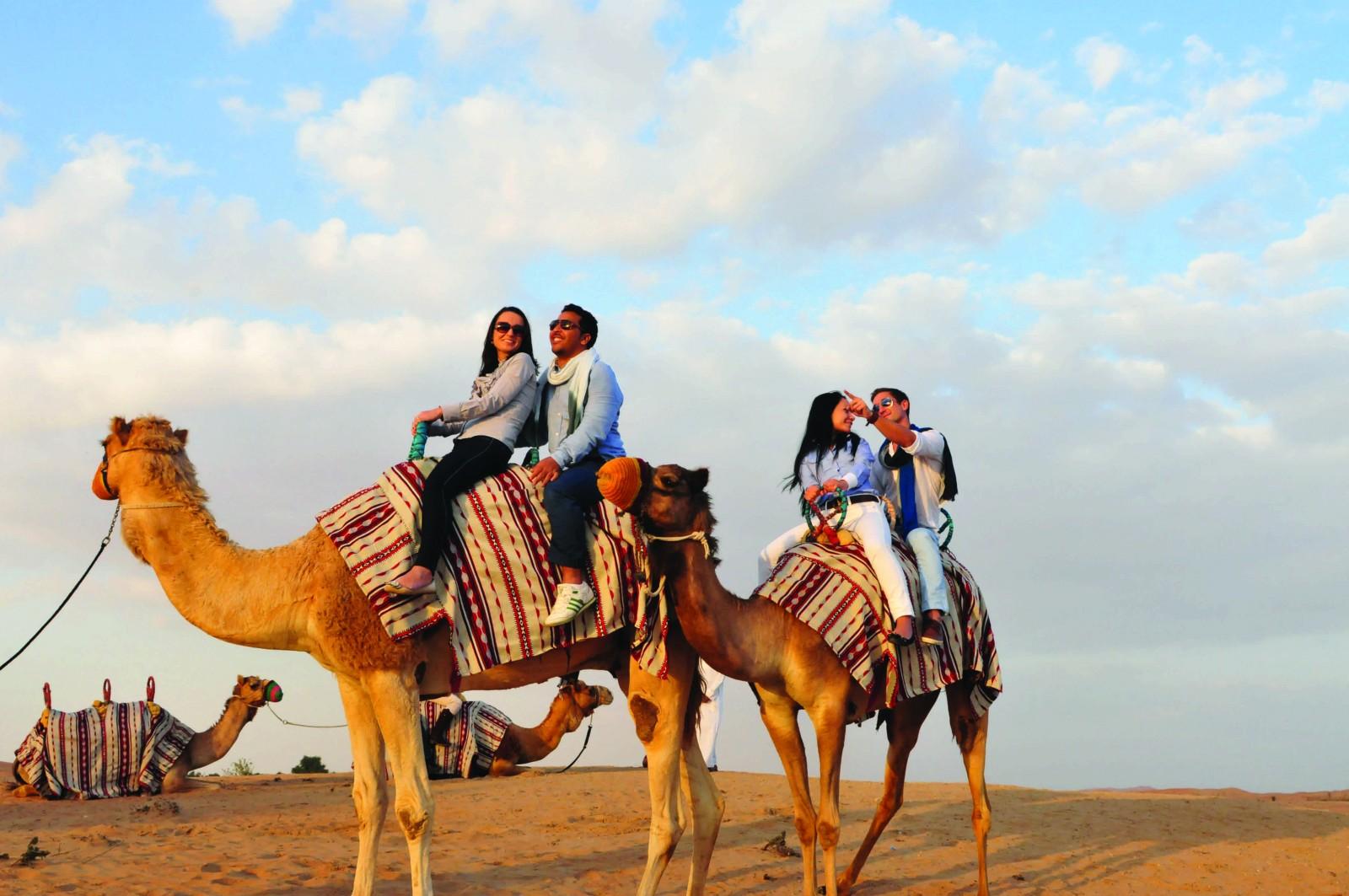 Sundowner Safari, Dhabi, Emirates, Supplier Photo (Exeter)