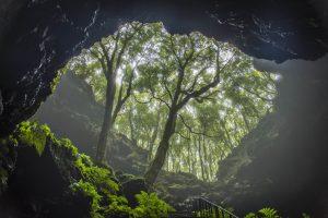 Pico Lava Tunnel-the Azores