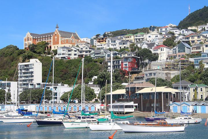 Cruise, Wellington, New Zealand, Pixabay.com