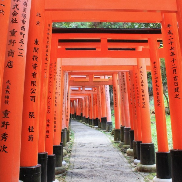 Japan's Well-Kept Secrets (11 days)
