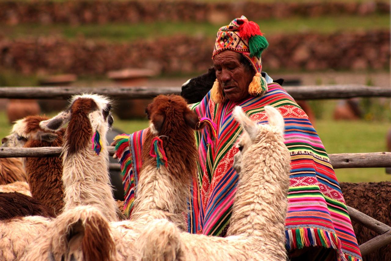 llama, Peru, Pixabay.com
